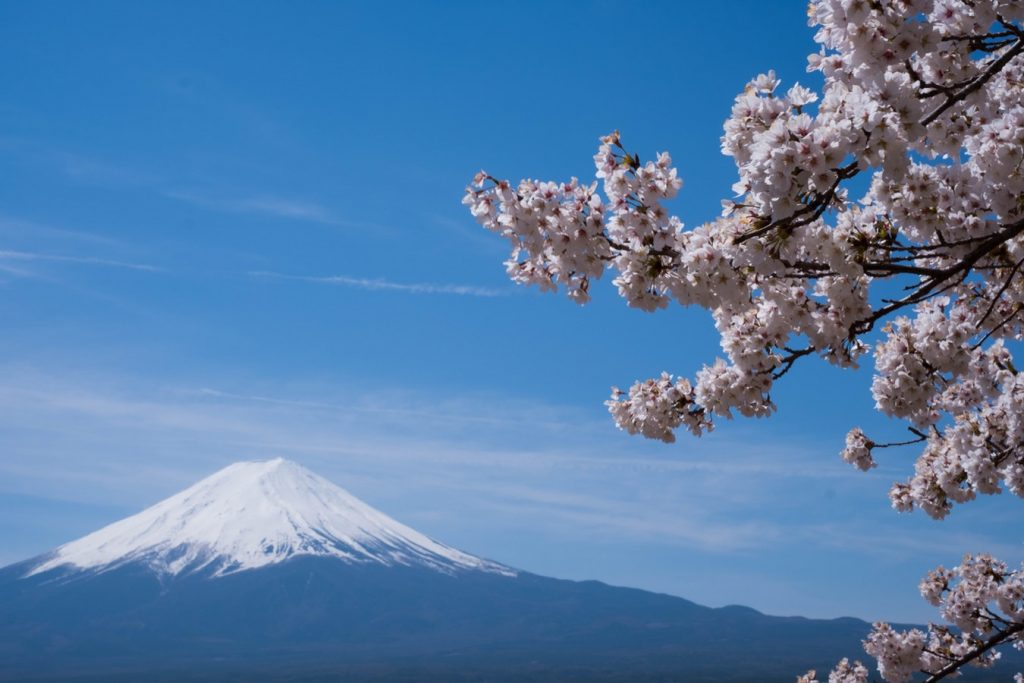 "ES"" critical thinking mt fuji"